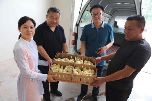 中亚协公益工作部送鸡苗到隆化  精准扶贫帮扶村民
